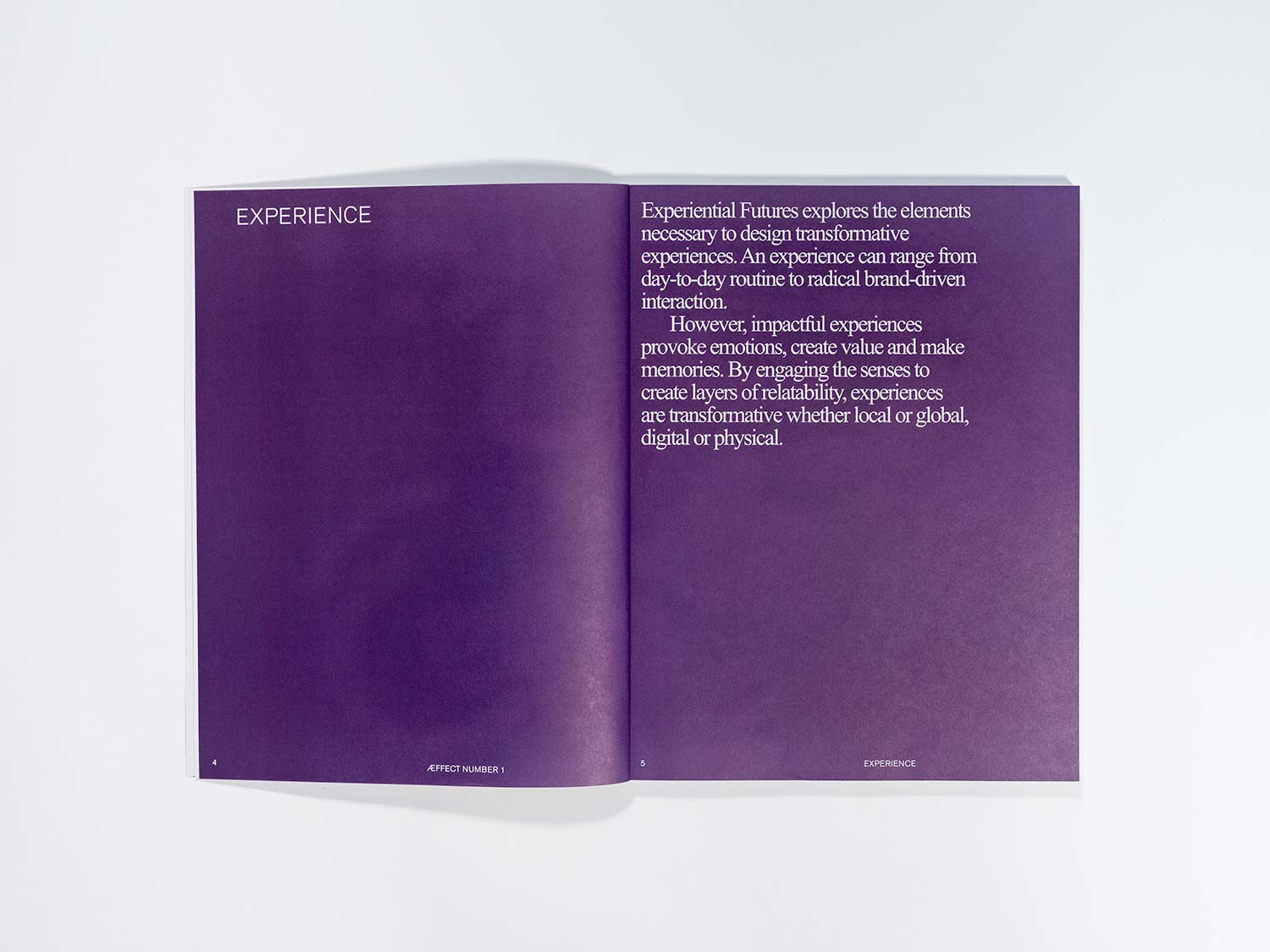 The picture shows a spread Æffect Journal.